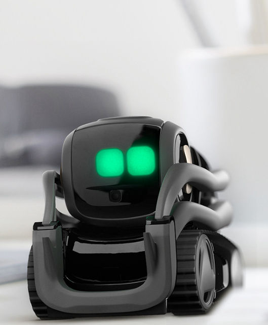 Home robotics is here in the form of Vector